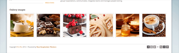 PinkRio Tema WordPress FREE minimal e responsive 04