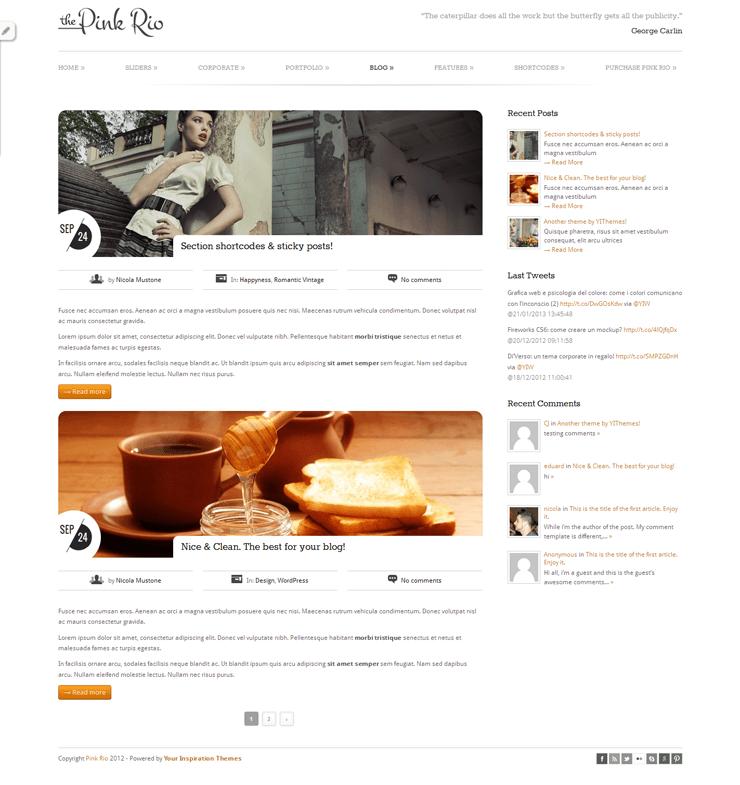 PinkRio Tema WordPress FREE minimal e responsive 07