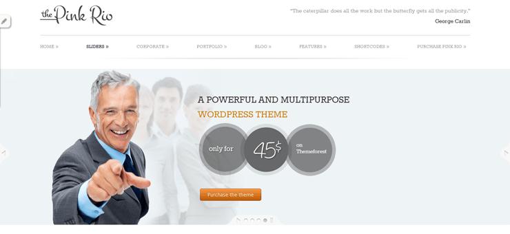 PinkRio Tema WordPress FREE minimal e responsive 17