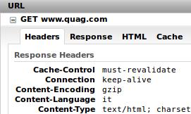 content-encoding-gzip
